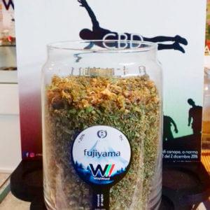 LikeWeed Trinciato LikeWeed recensione migliore giudizio pro shop cannabis light cbd hempshop infiorescenze