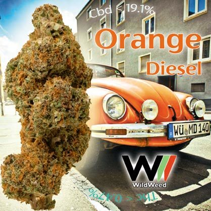 Orange Diesel CBD 19.1%