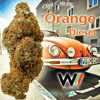 orange diesel cbd