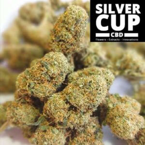 skywalker silver cup cbd cannabis light