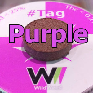 #tag purple cbd hasih like weed LikeWeed Shop OnLine Cannabis Light CBD il migliore giudizio canapa erba legale hemp