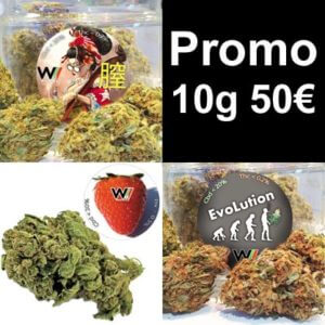promozione 10g 50€