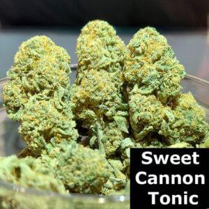 sweet cannon tonic
