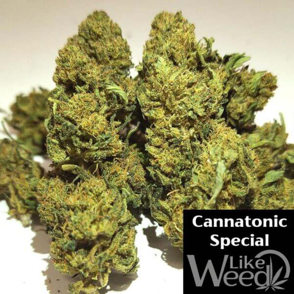 Cannatonic Special likeweed