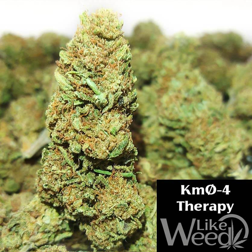 KmØ-4 Therapy