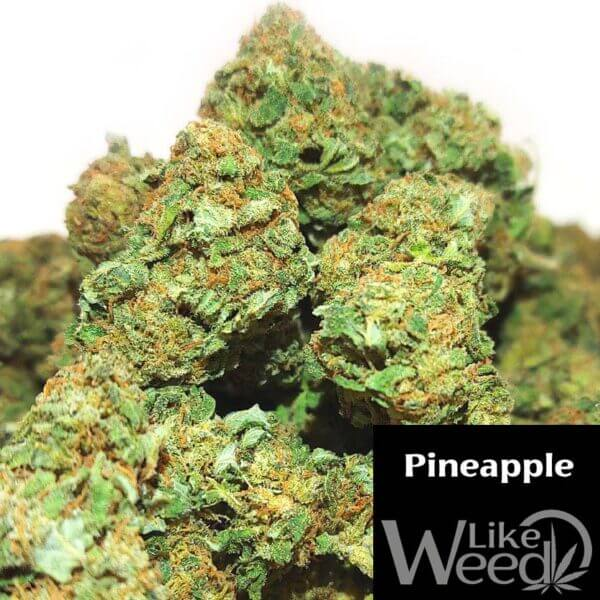 pineapple cbd