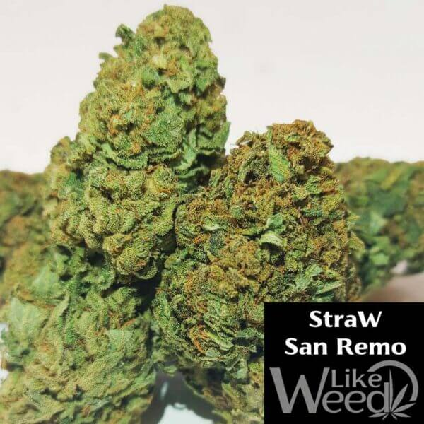 Strawberry CBD