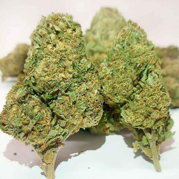 gorilla glue cbd weed cannabis